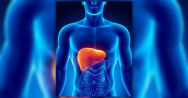 Prodotti naturali per depurare il fegato