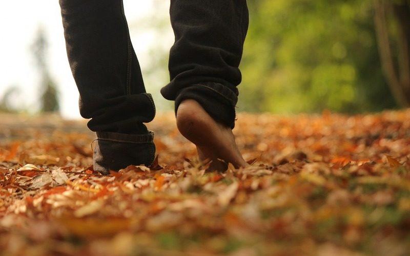 autunno_800x533